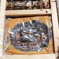 FendPoll méhtakarmány a kaptárban