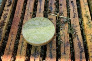 Fendpoll méhtakarmány kísérlet